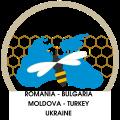 Інтенсифікація торгівлі і модернізація бджільництва, а також пов'язаних з ним секторів економіки